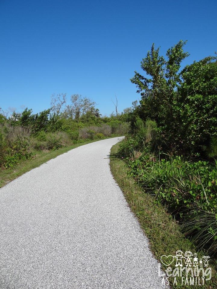 Nature Walk in Robinson Preserve