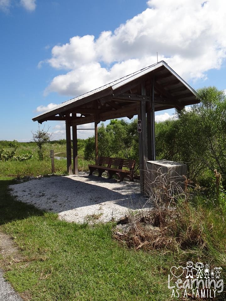 Shade and shelter at Robinson Preserve