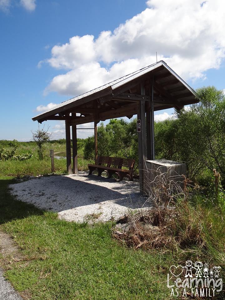 Shade and shelter at Robinson Preserve