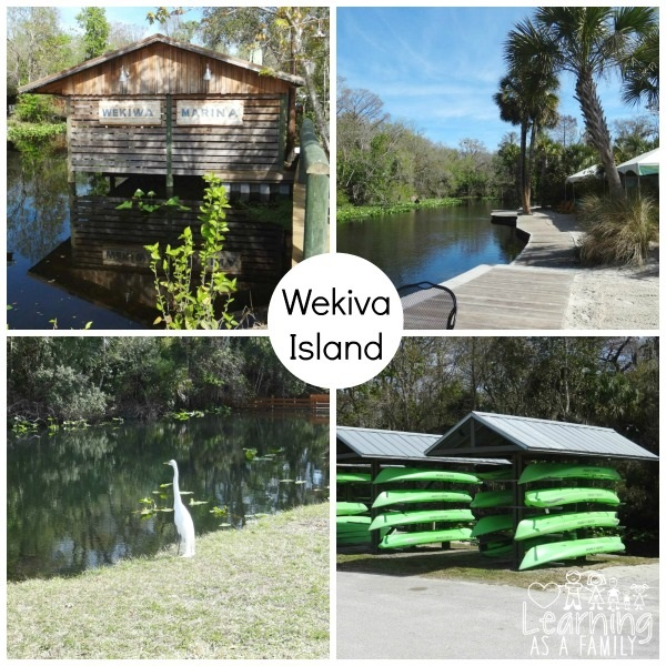 Shots of Wekiva Island