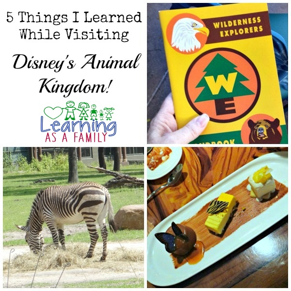 5 Things I Learned about Disney's Animal Kingdom!