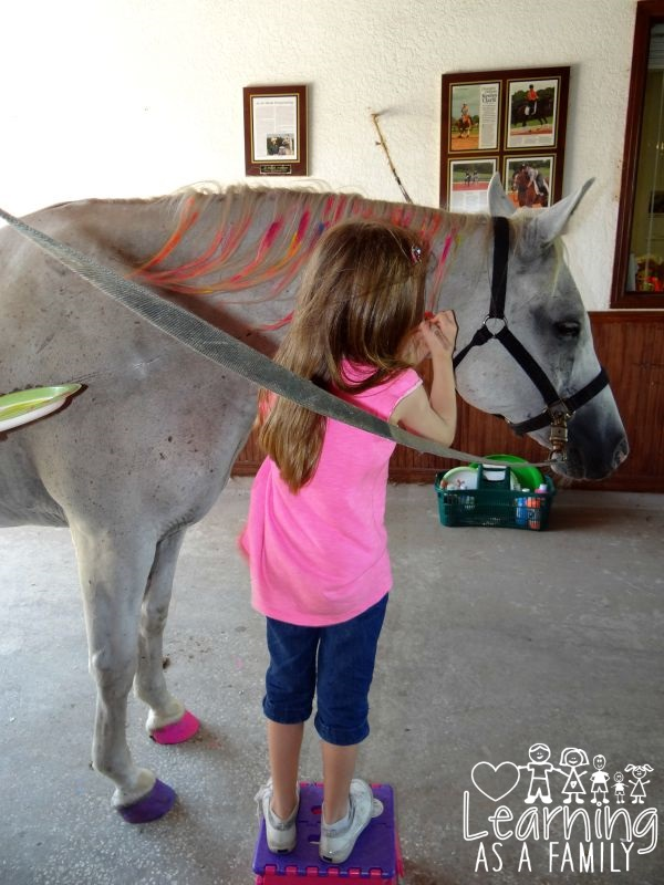 Painting A Horse at Al-Marah Arabians Clermont, FL