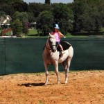 Learning To Ride At The Al-Marah's Interactive Horse Experience!