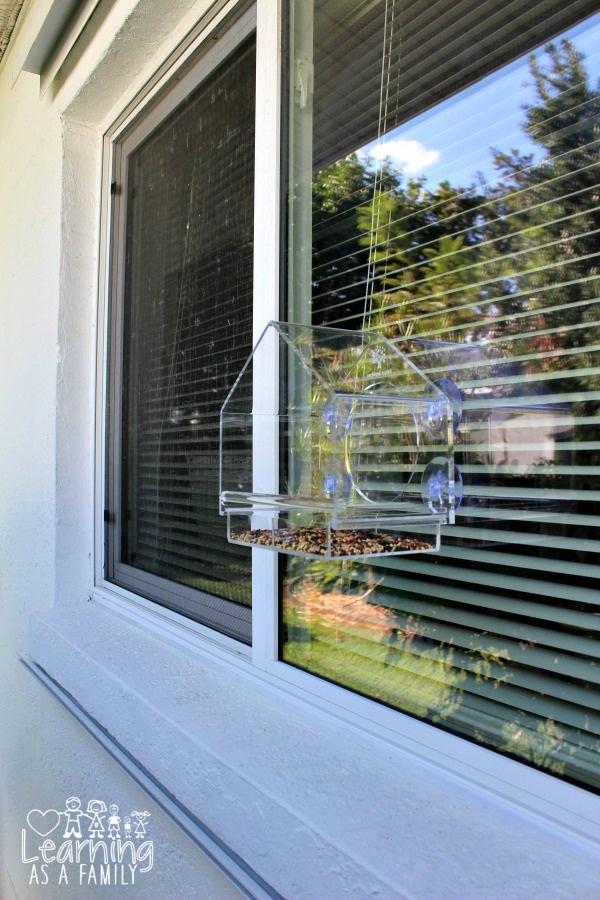 nature-anywhere-window-bird-feeder