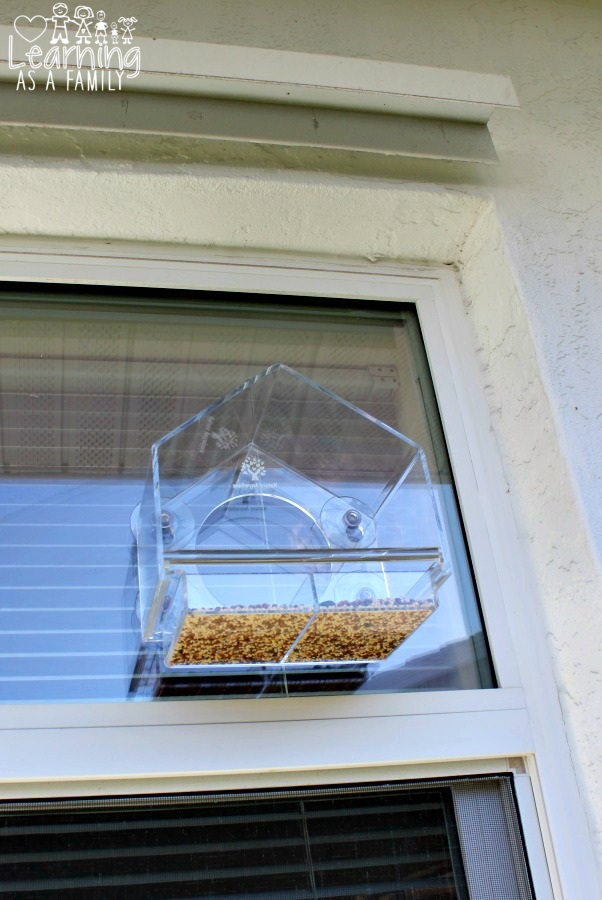 window-bird-feeder-by-nature-anywhere